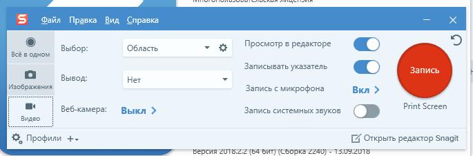 Русский SnagIt