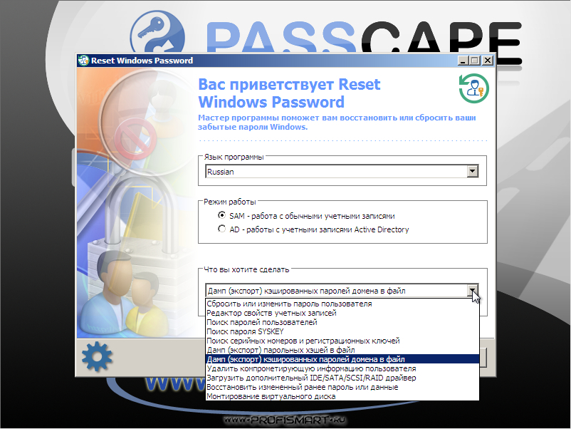 Passcape Software Reset Windows Password