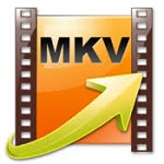 MKV Player logo