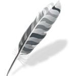Wing IDE logo