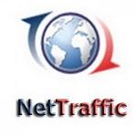 NetTraffic logo